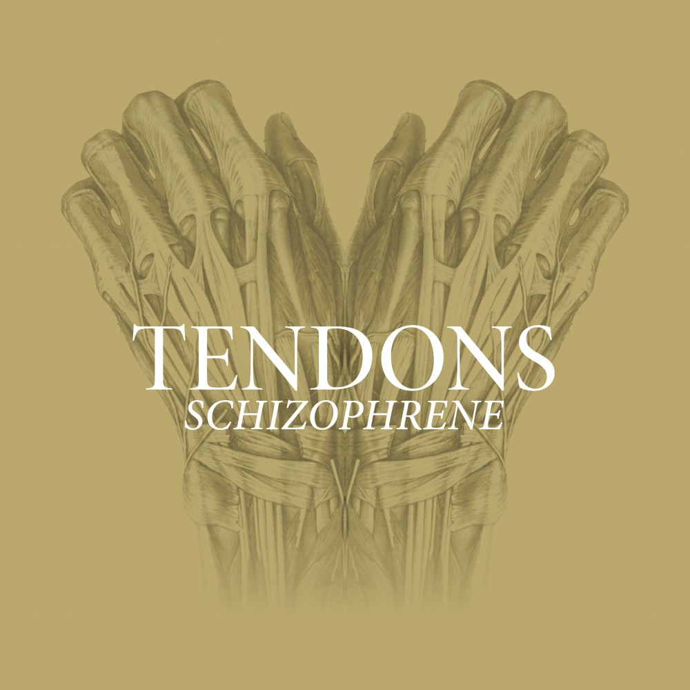 Tendons - Schizophrene